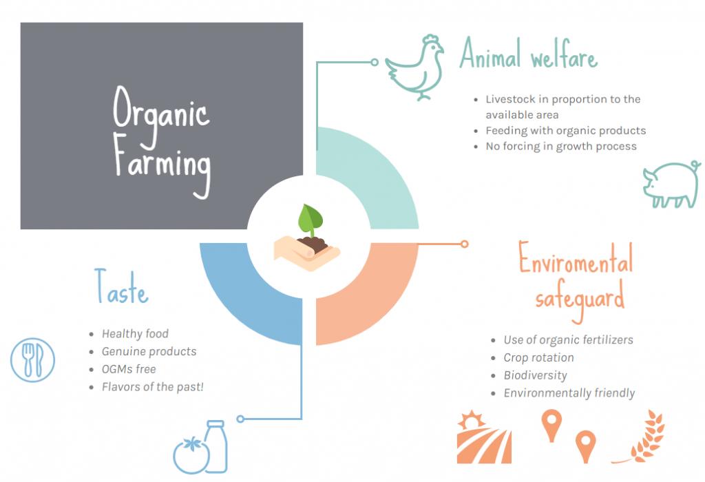 Organic farming infographic